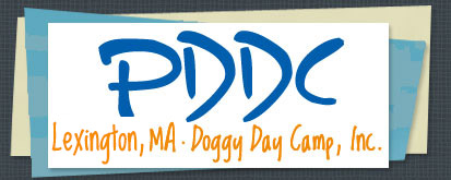 PDDC Doggy Day Camp, Inc.